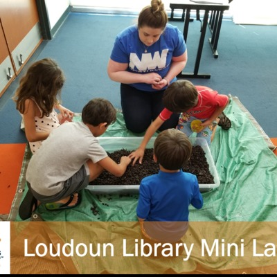 Each Summer we visit all of the Loudoun Library Branches with this free to attend program.